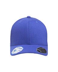 Flexfit Adult Pro-Formance® Solid Cap 110C