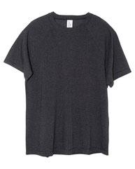 Threadfast Apparel Unisex Impact Raglan T-Shirt 382R