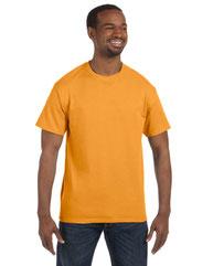 Hanes Men's 6 oz. Authentic-T T-Shirt